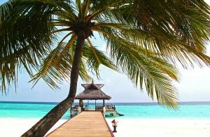 beach-612553_1280