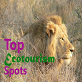 Top 5 Ecotourism Spots You Should Visit Around the World