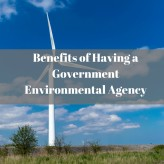 Benefits of Having a Government Environmental Agency