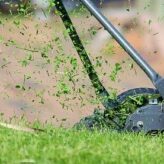 6 Ways to Make Your Lawn Care Business Eco-Friendly