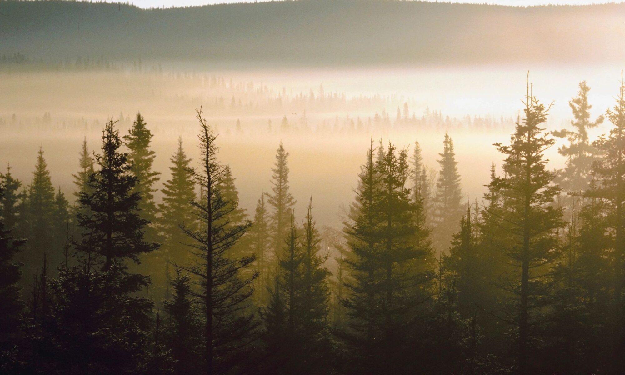 Environmental Professionals Network