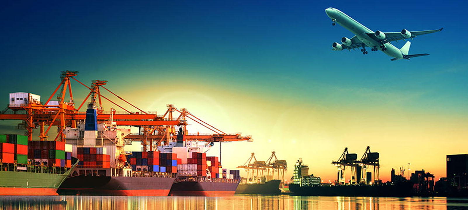 Japan Importer of Record IOR