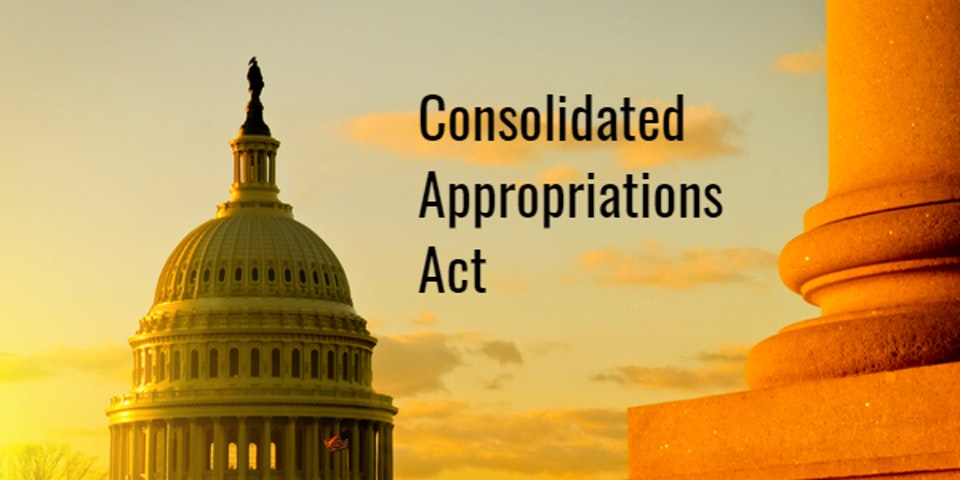 Consolidated Appropriation Act 2021