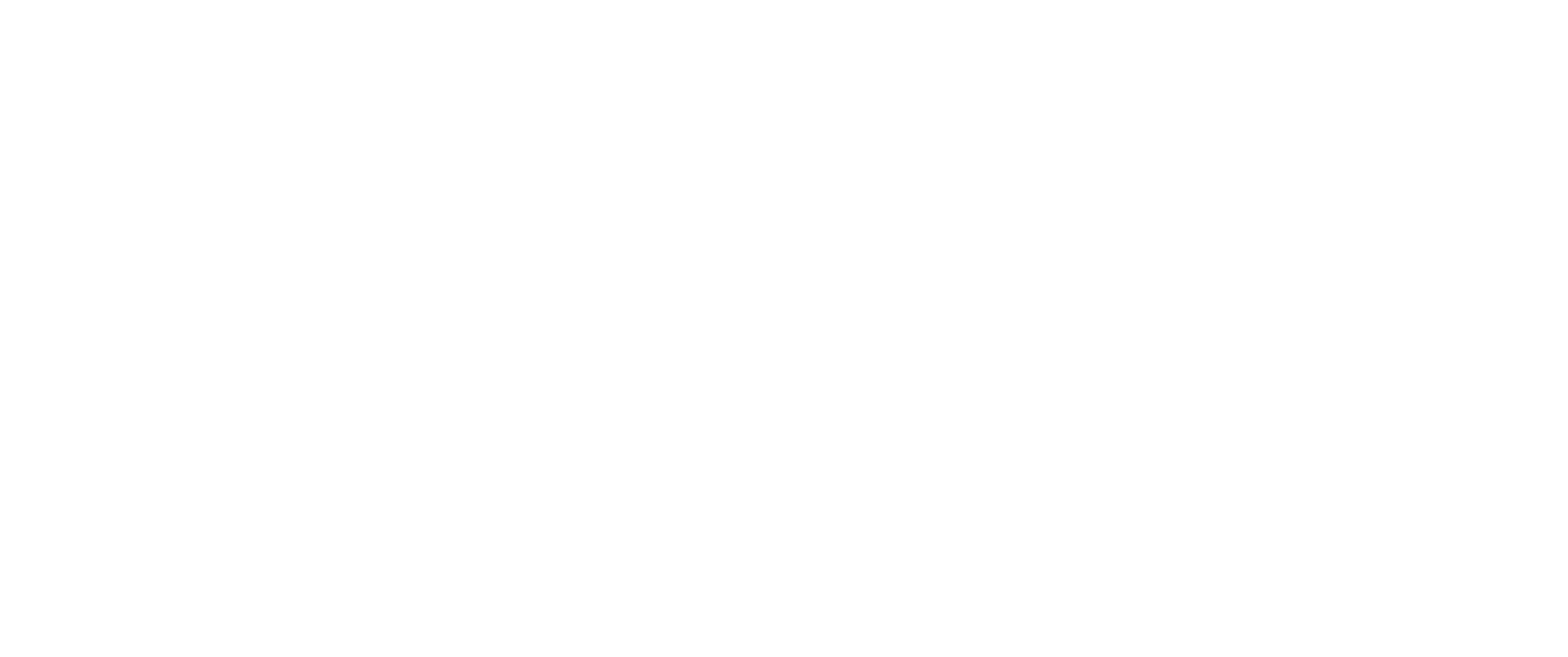 sports medicine experts white logo