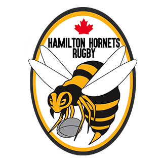 Hamilton Hornets Rugby logo for sports medicine experts homepage