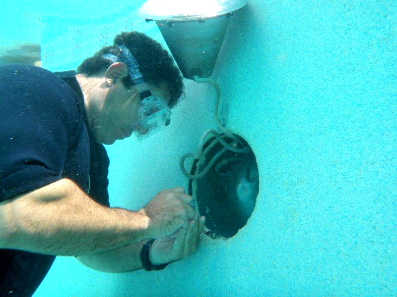 In addition to residential pool care and pool cleaning, Florida Pool and Leak also offers pool leak detection and pool repair near the city; you can reach us at 305.228.0880 for a free estimate.