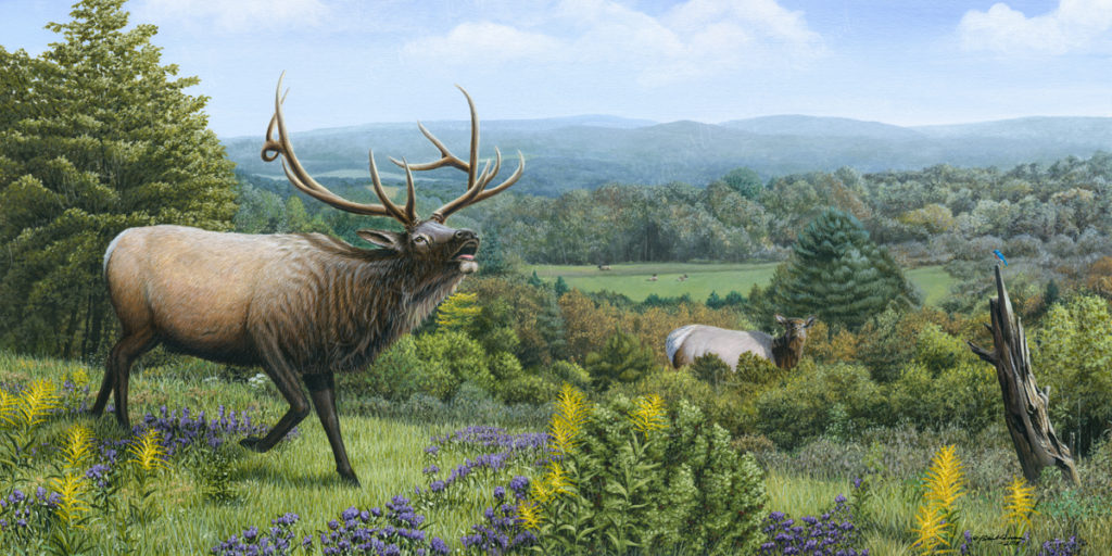 Acrylic painting of some Elk by Patrick Gnan.