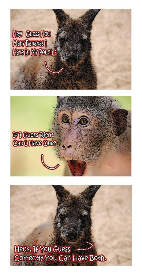 kangaroo joke.full