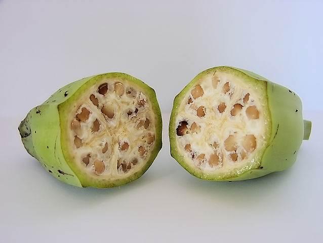 Bananas, Banana Review, Funny Review, Fruit, Food