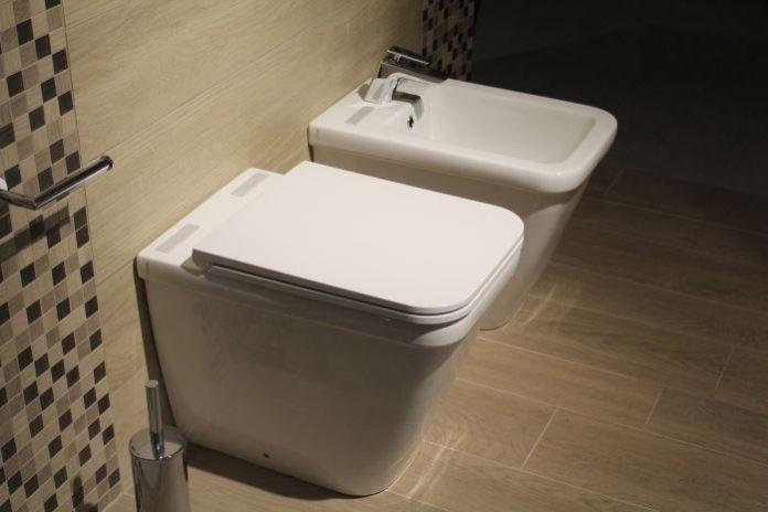 Monkey Pickles, Word Soup, Japanese toilets, bidet toilet seat, how to use a bidet toilet