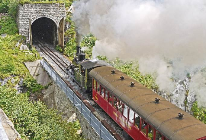 travel by train, French jokes, Funny Joke Of The Day, Monkey Pickles
