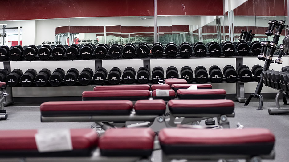 temple IBC weights