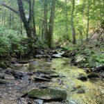 Talking Rock Creek East
