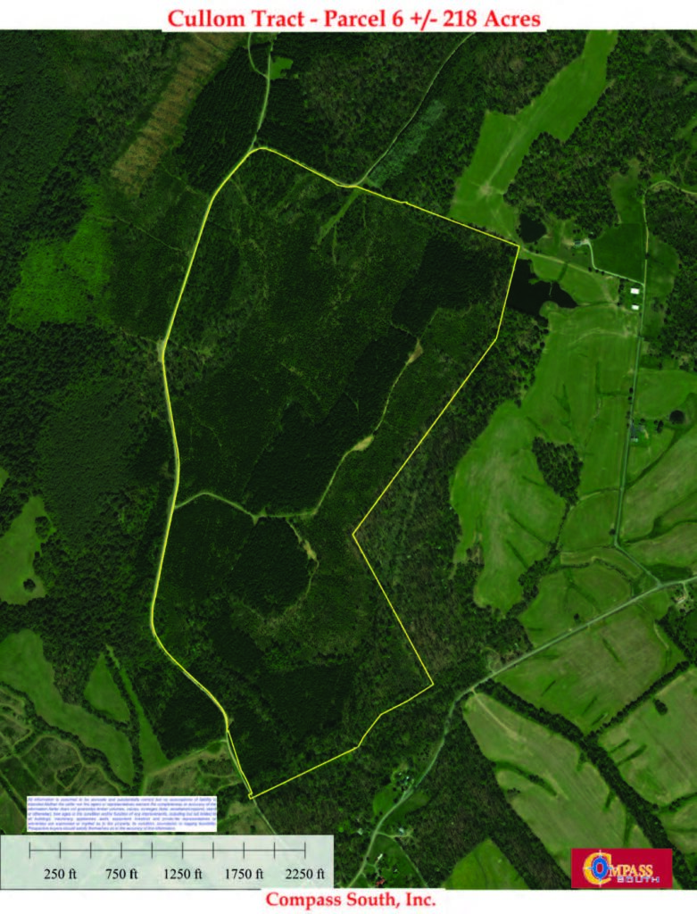 Cullom Tract 6 Aerial Map
