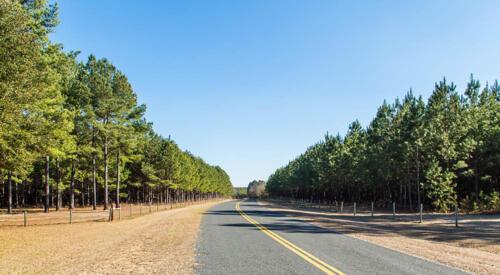Plantation Road Frontage