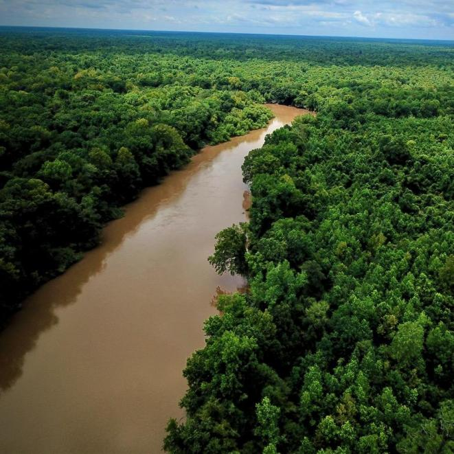 The Great Pee Dee River