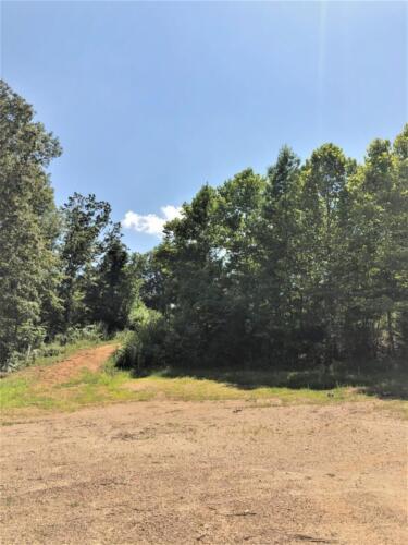 Big Cedar Parcel H Trail