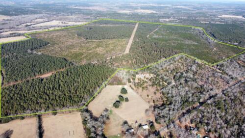 Poinsettia Road Boundary