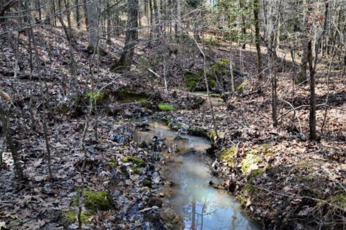 Carlisle West Tract Creek