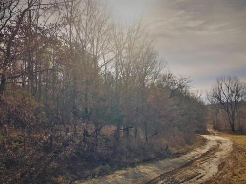 Cullom Tract 6 Road