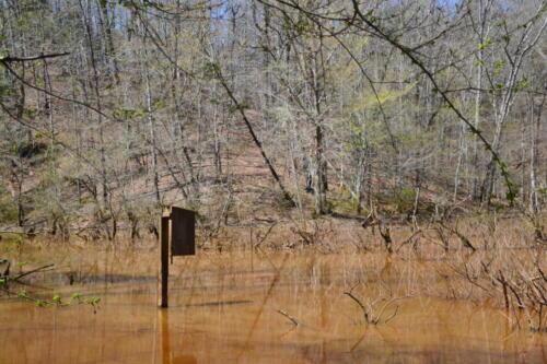 Fairforest Duck Box