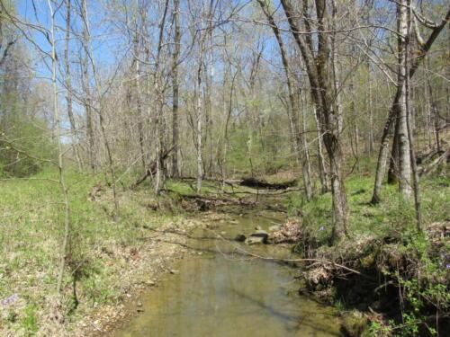 Marion Conn 4 Creek