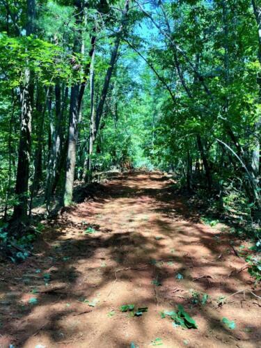 Talking Rock Creek North Road
