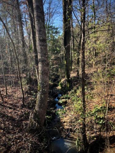 White Creek East