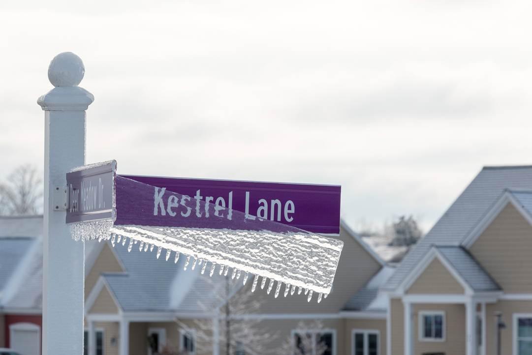 Eastview winterscape Ice Storm
