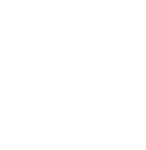 Fifth Ward White Seal Color