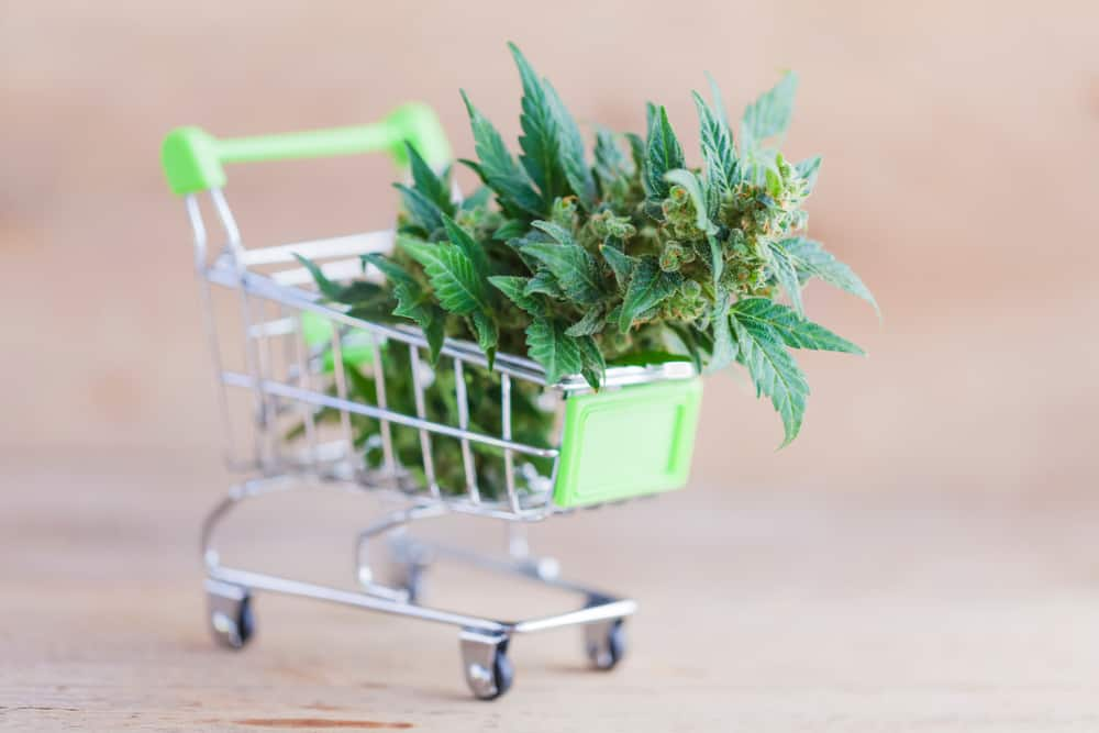 How the Legalization of Marijuana Has Affected the Industrial Real Estate Market