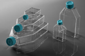 Cell Culture Flask, Plug Seal Cap, Treated, Sterile