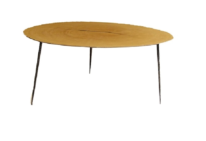 Oakley Low Coffee Table Home Ingredients