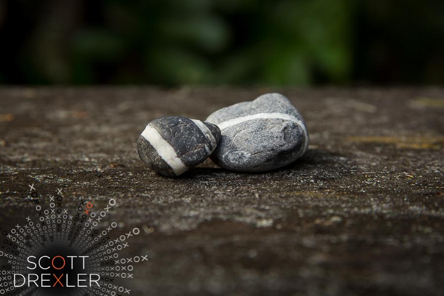 ScottDrexlerPhotography-702