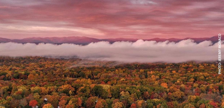 photo of foggy fall landscape