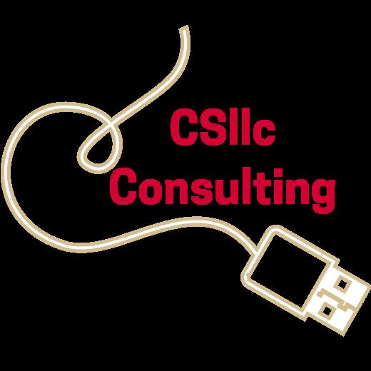 CSllc Consulting