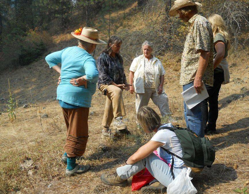 Spring Equinox Herbalist Gathering