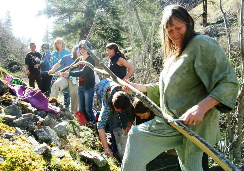 Medicines from the Forest ~ a Week-long Intensive in McCall