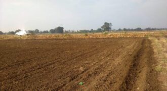 Land for sale in Bhopal – Agriculture Land for sale Near Rehti Salkanpur