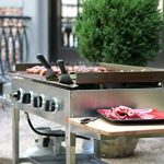 blackstone griddle stainless steel