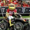 Atlanta Falcons Freddie Falcon
