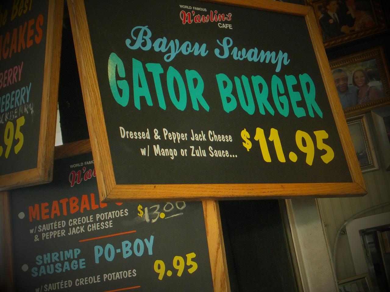 Alligator Recipes