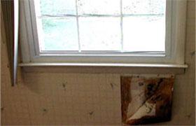 Mold under bathroom wallpaper