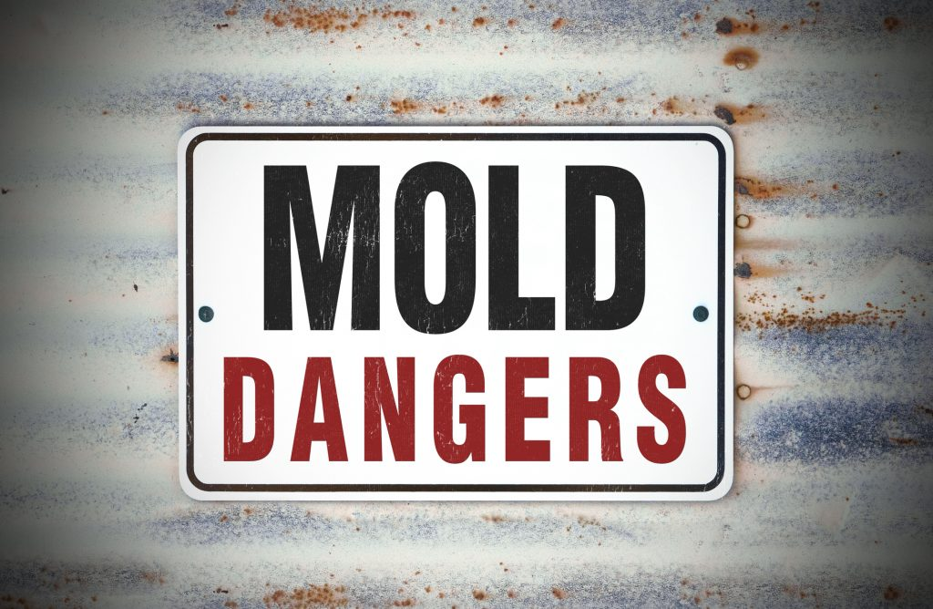 Mold Dangers Sign