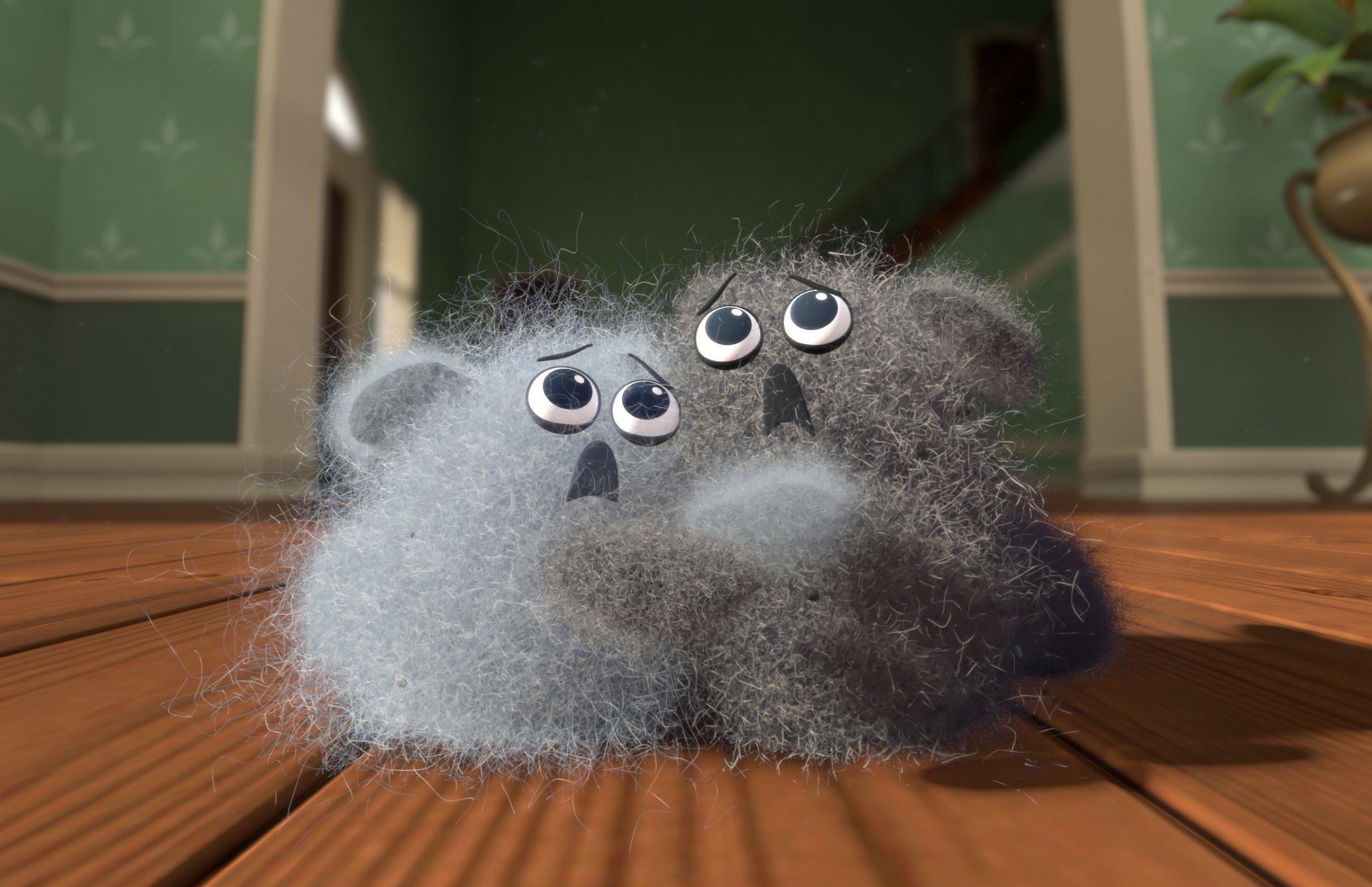 dust buddies