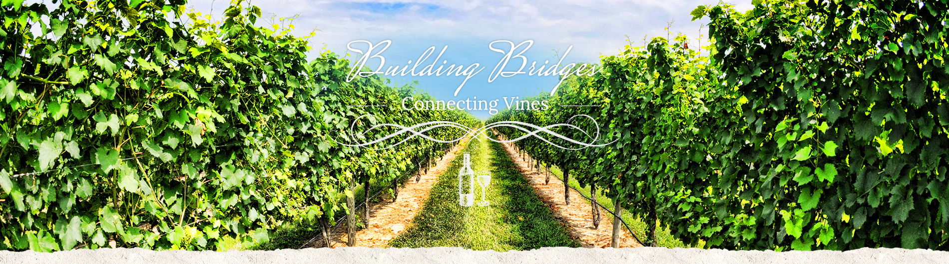 Building Bridges - Connecting Vines