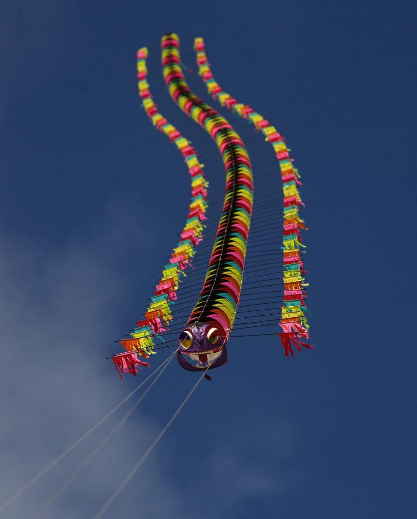 Tyrus Wong Centipede Kite | Photo © Sara Jane Boyers
