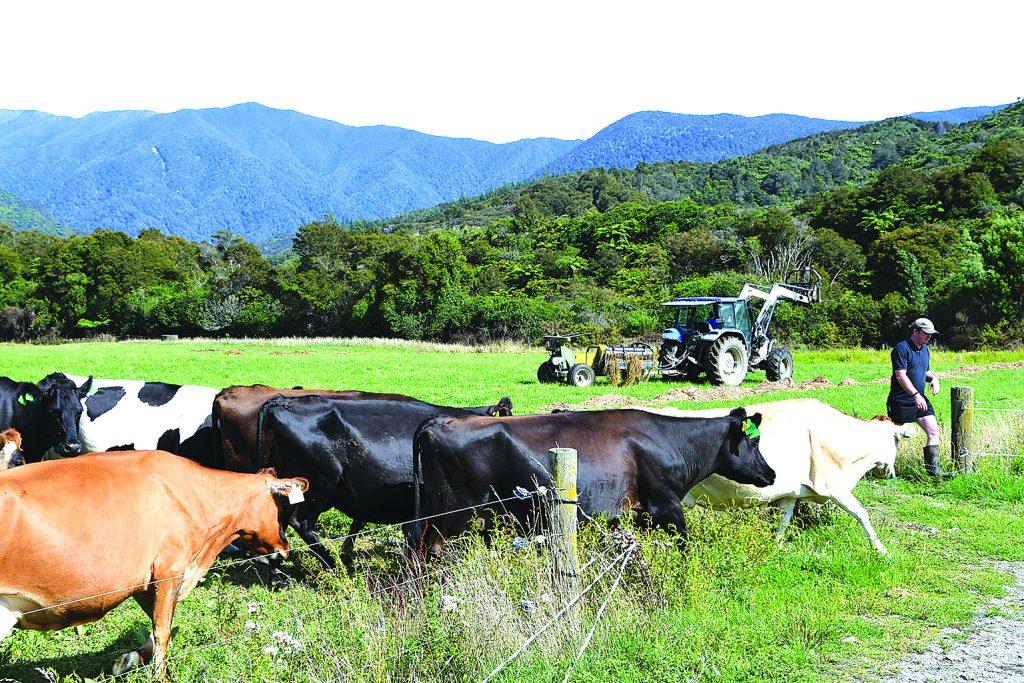Farmers carry on farming
