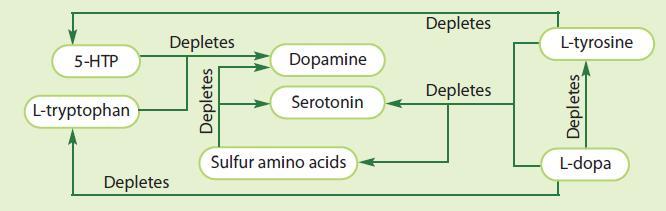 aminoacids2