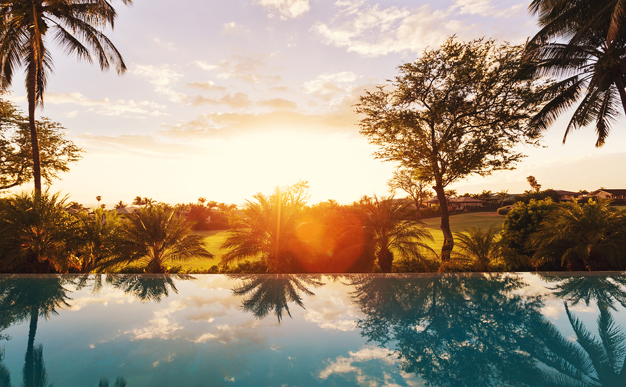 Create a Backyard Oasis by Building a Pool